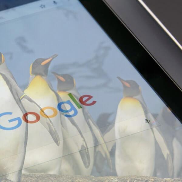 New Google Penguin Update Imminent