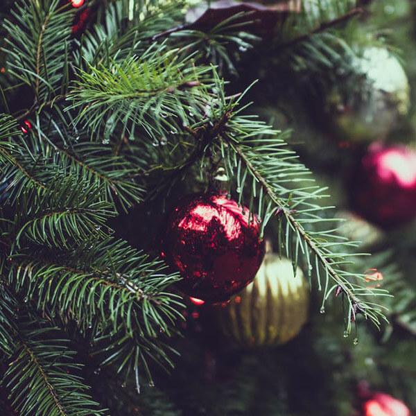 Christmas SEO: Don't Forget Your Seasonal Keywords